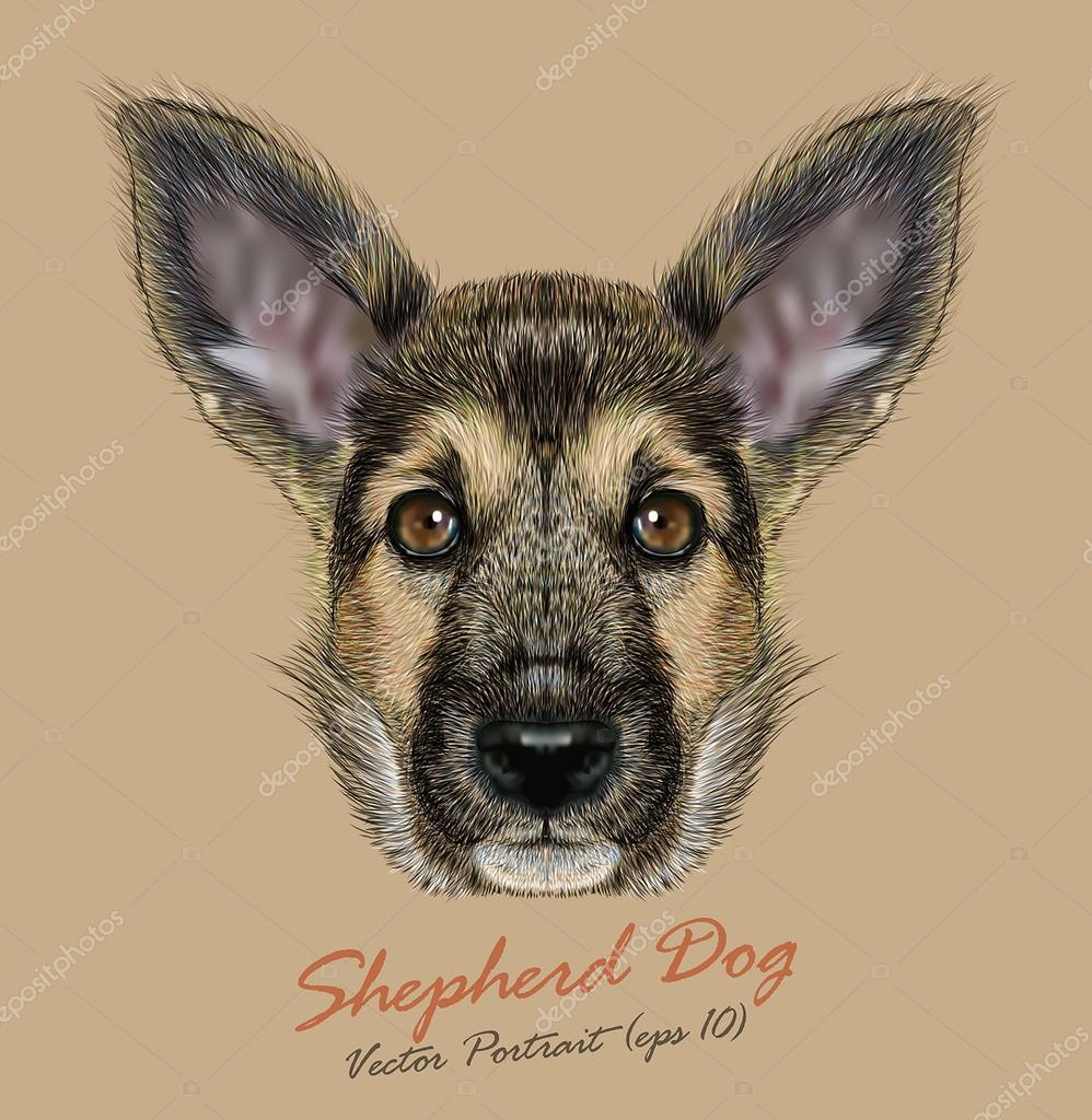 Shepherd Dog animal cute face. Vector funny german shepherd puppy head portrait. Realistic adorable fur portrait of Shepherd police dog isolated on beige background.