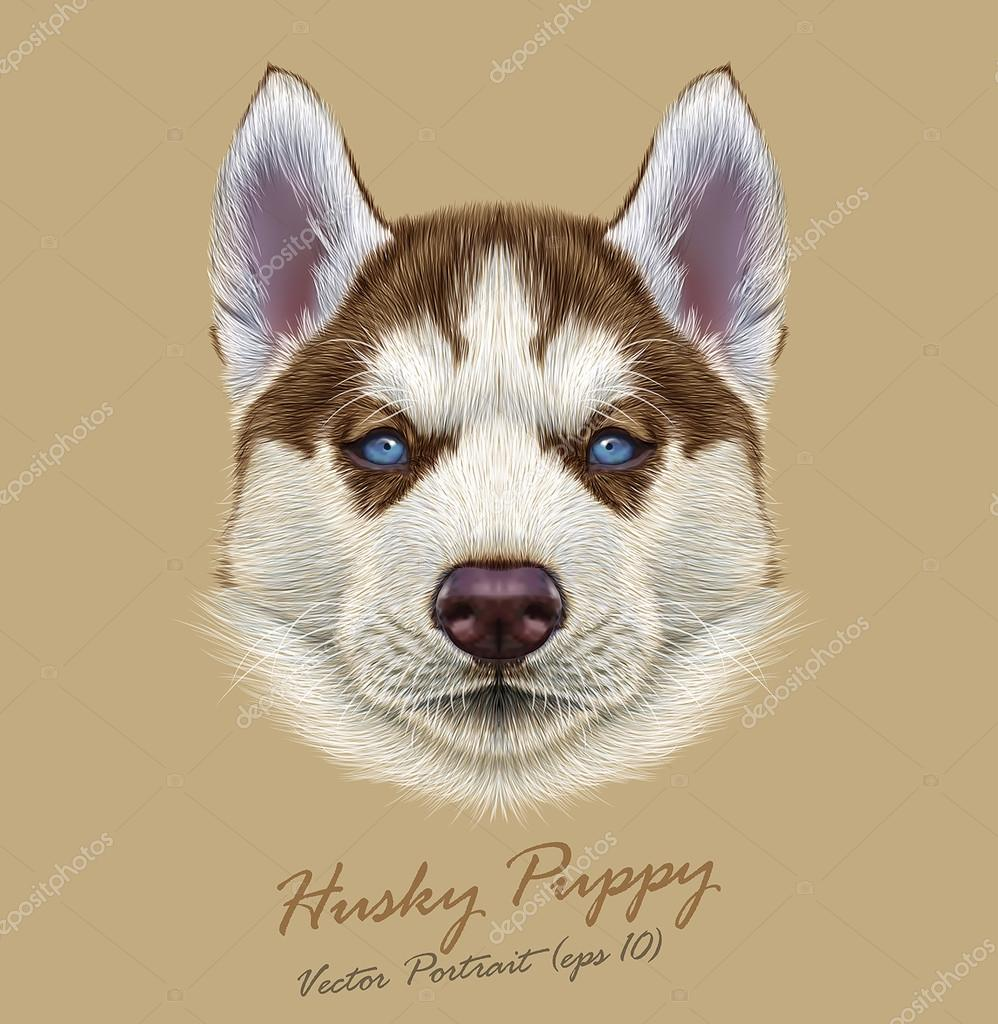 Vector Illustrative Portrait of Husky Puppy