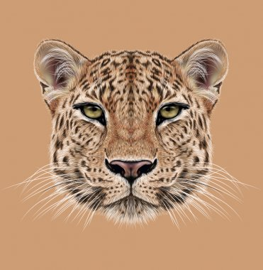 Illustrative Portrait of Leopard