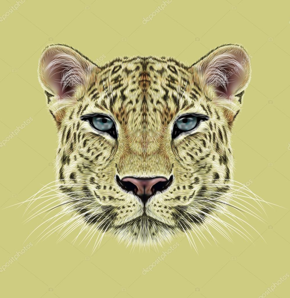 Illustrative Portrait of Leopard