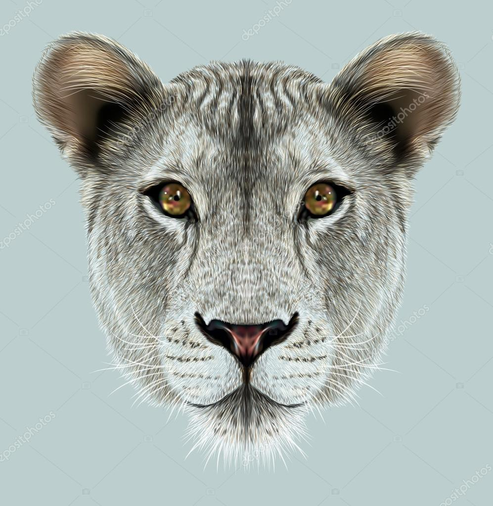 Portrait of Lioness.