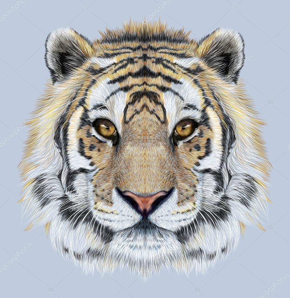 Portrait of a Tiger on blue background.