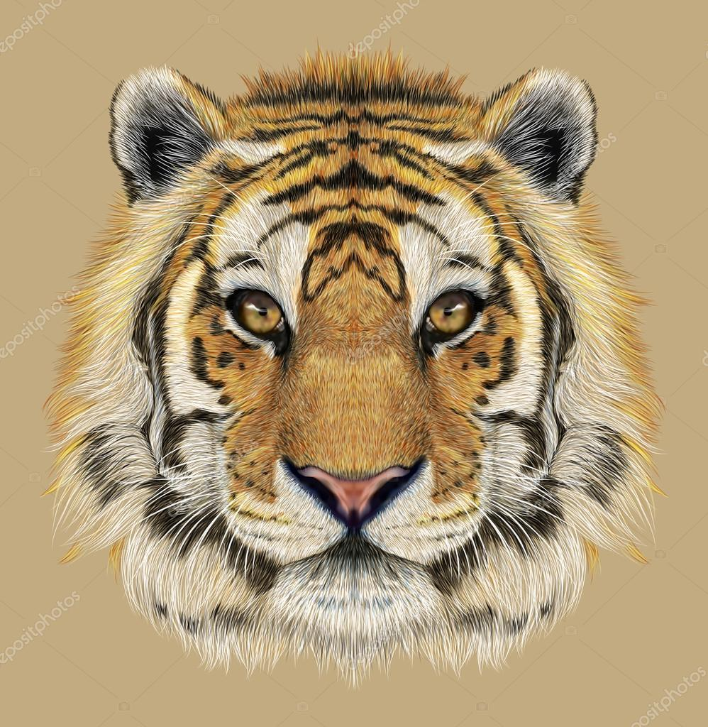 Portrait of a Tiger.