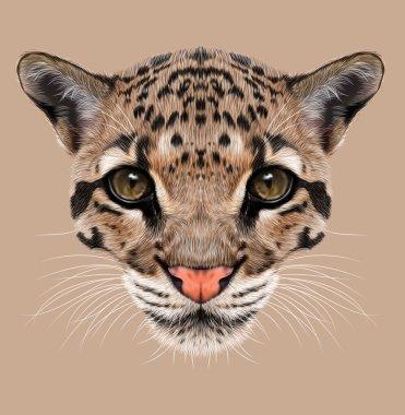 Illustrative Portrait of Clouded Leopard