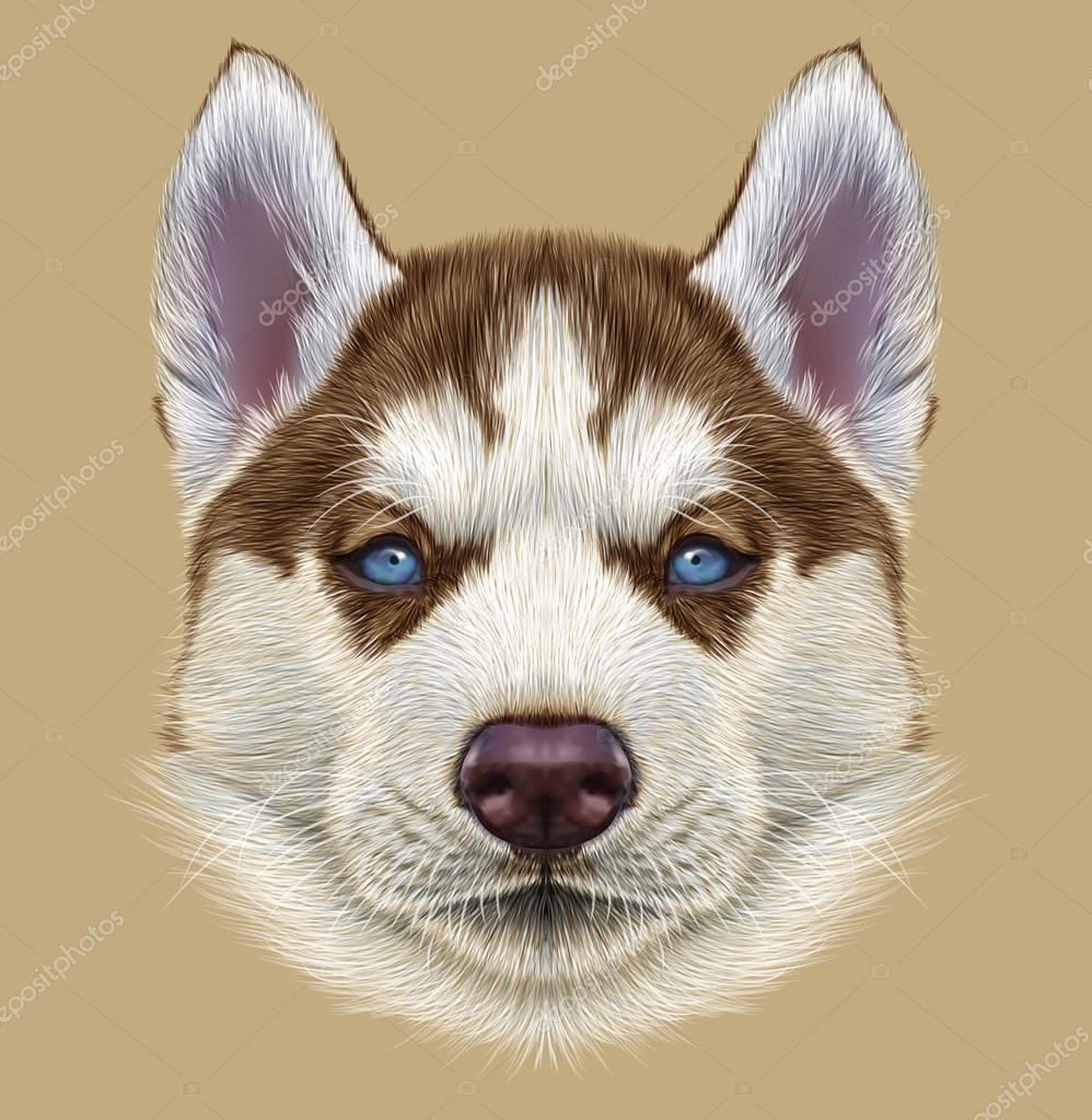Illustrative Portrait of Husky Puppy
