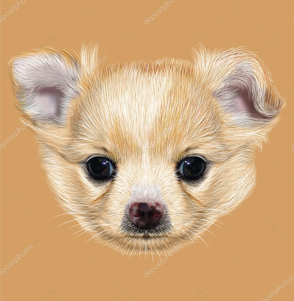 Illustrative Portrait of Chihuahua Puppy