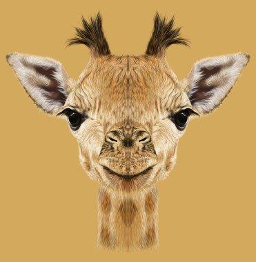 Illustrative portrait of Giraffe.