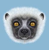 Fotografie Illustrated Portrait of Sifaka Lemur