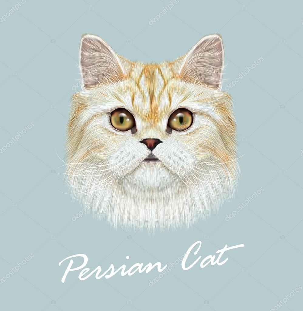 Vector Illustrated Portrait of Persian Cat.