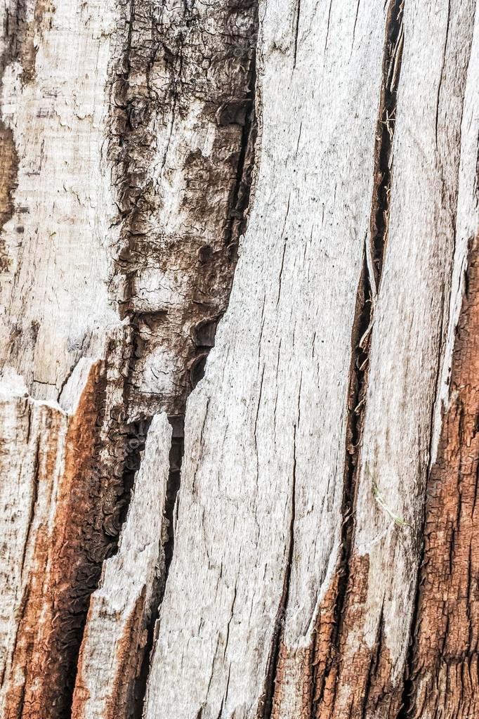 Old Weathered Cracked Rotten Wooden Railway Sleeper Coarse Surface Texture