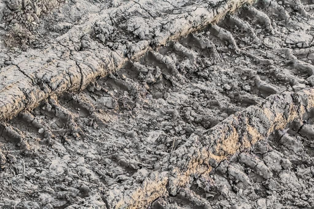 Dry Cracked Mud With Tire Tracks
