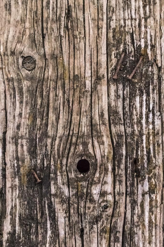 Old Weathered Rotten Cracked Square Timber Bollard Bituminous Surface Texture