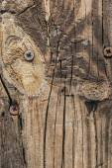 Staré vázané popraskané hrubé texturou prkenné Detail