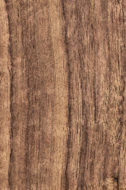 Walnut Wood Veneer Grunge Texture Sample