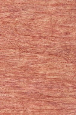 Cherry Wood Veneer Bleached Stained Grunge Texture Sample