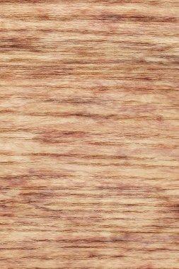 Natural Oak Wood Veneer Bleached Mottled Grunge Texture Sample