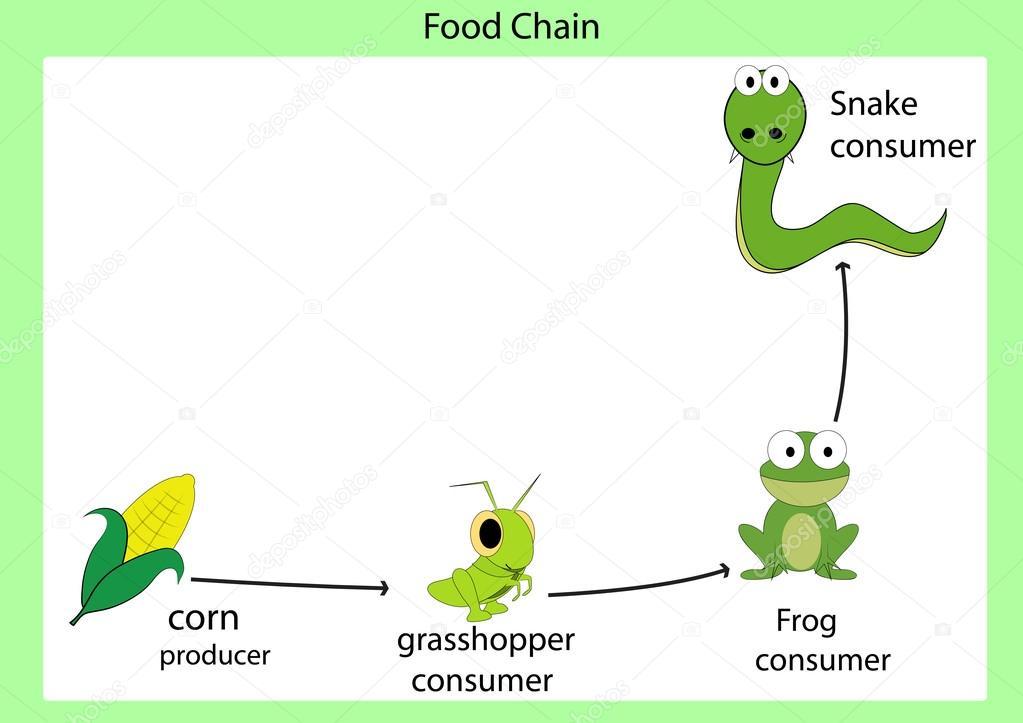 foog chain vector