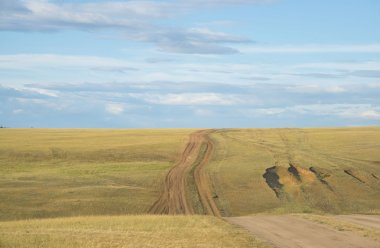 road on hill in green  grass