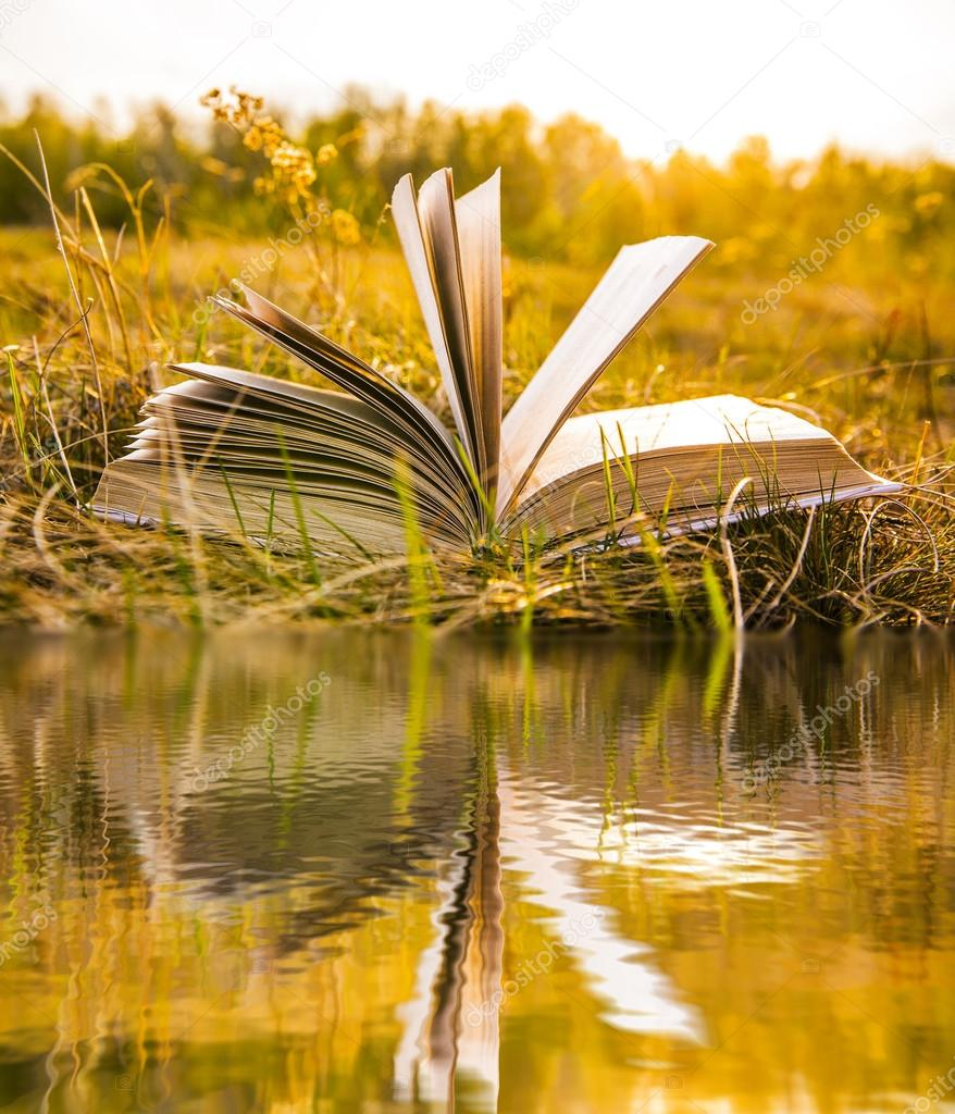 opened book in  autumn field