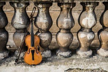 violin by  old retro fence.