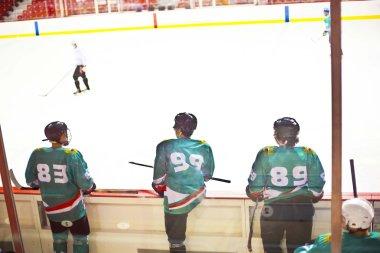 male hockey players