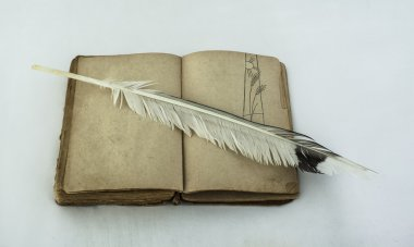 open book with  feather