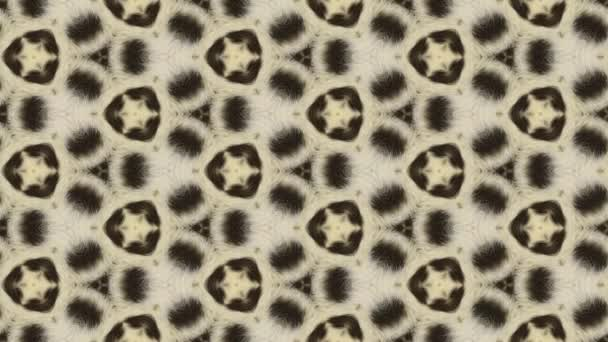 Abstract leopard background animation
