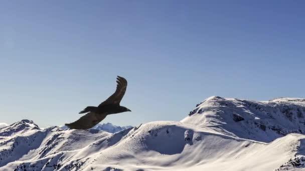 Zpomalený pohyb letícího orla, Paralaxní animace