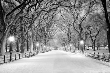 Central Park, NY covered in snow at dawn
