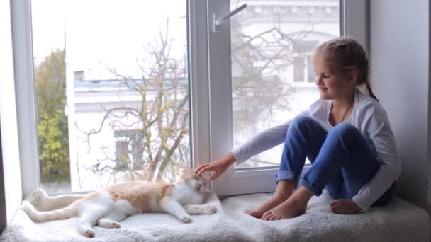 The cat and the girl are sitting on the windowsill