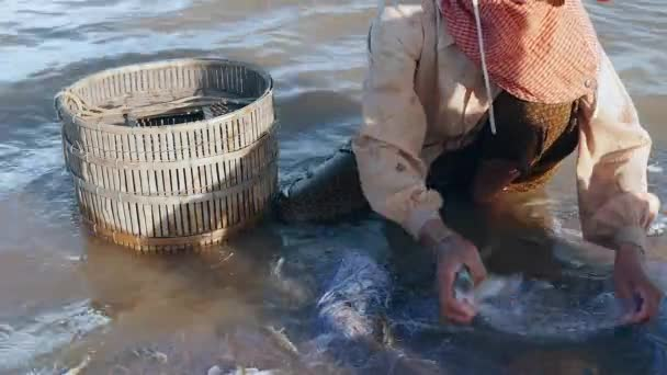 Fisherwoman removing enmeshed fish catch and keeping it in a bamboo basket