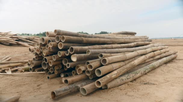 Woman stacking bamboo poles up on sandbank ( close up)