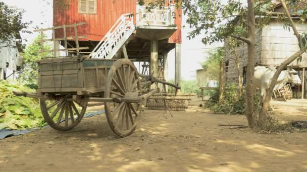 Rural cart with stack of tobacco leaves in a farm