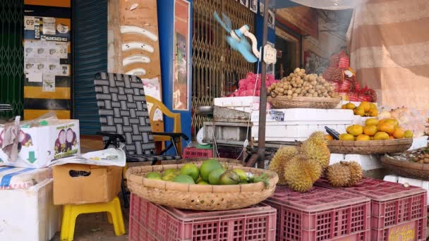 Local fruits stall and a fan blowing air towards the seat of the fruit vendor