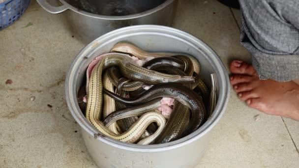 Acél pot töltött a rögzített kígyók a főzéshez