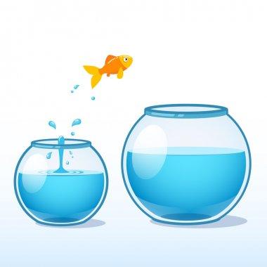 Goldfish making a leap