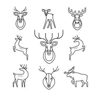 Jumping and standing deers