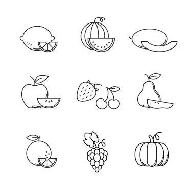 Fruit icons line art set.
