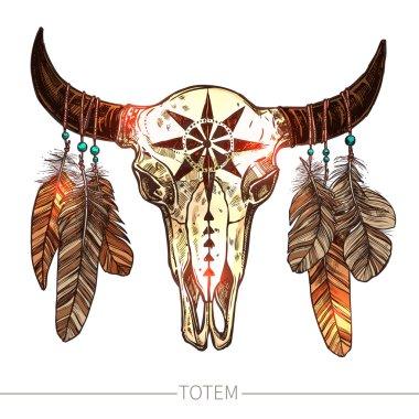 Buffalo Skull With Feathers.