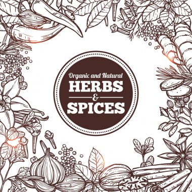 Natural Sketch Herbs And Spices