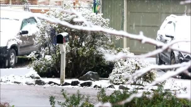 Hó hullott autók és postaláda.