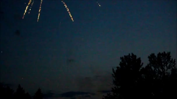Small groups of fireworks blowing up over the tree line