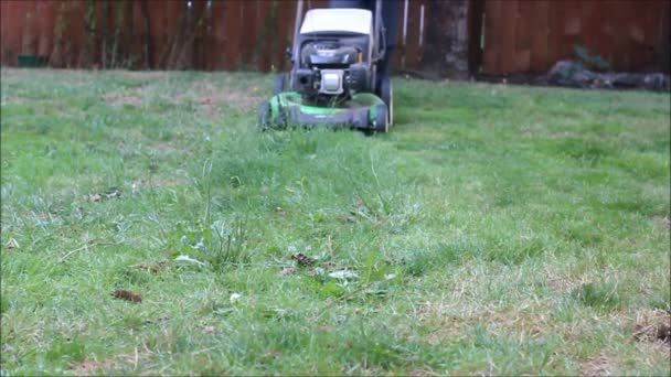 slow motion lawn mower takes down weeds