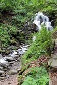 Shypit vodopád v Karpatech