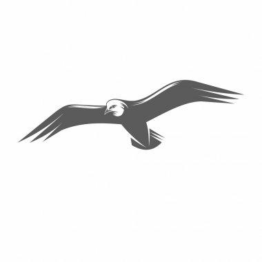 Seagull in flight black and white vector illustration