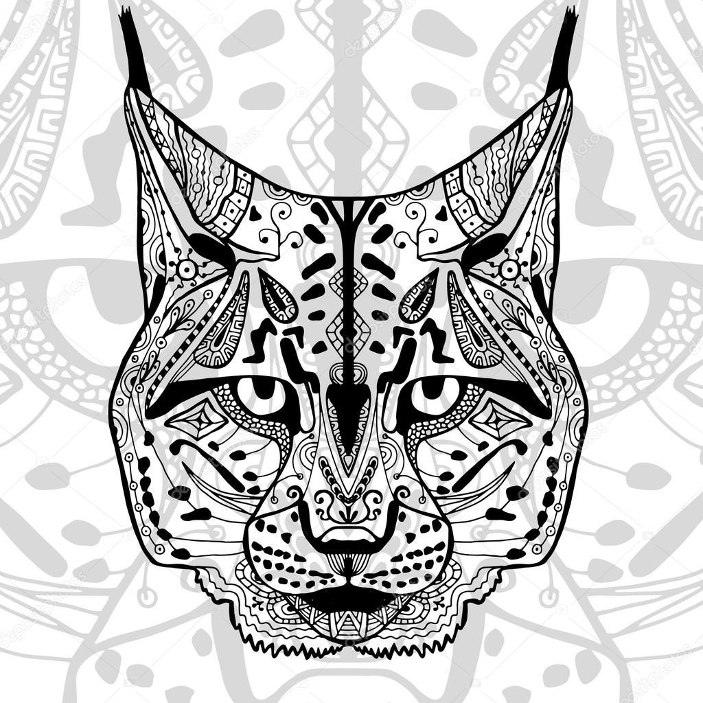 Imágenes Del Gato Montes Para Dibujar El Gato Montés Y Negro