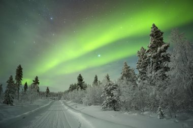 Aurora borealis over a track through winter landscape, Finnish L