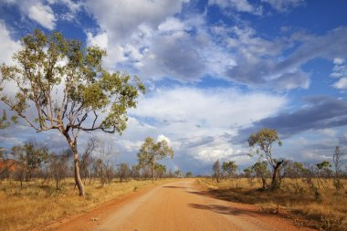 Unsealed road in the outback of Western Australia