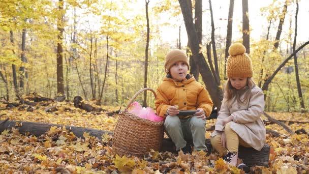 Malé děti používají smartphone v lese