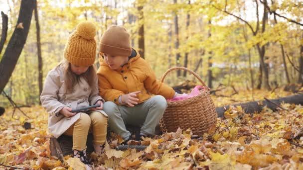 A kisgyerekek okostelefont használnak az erdőben.